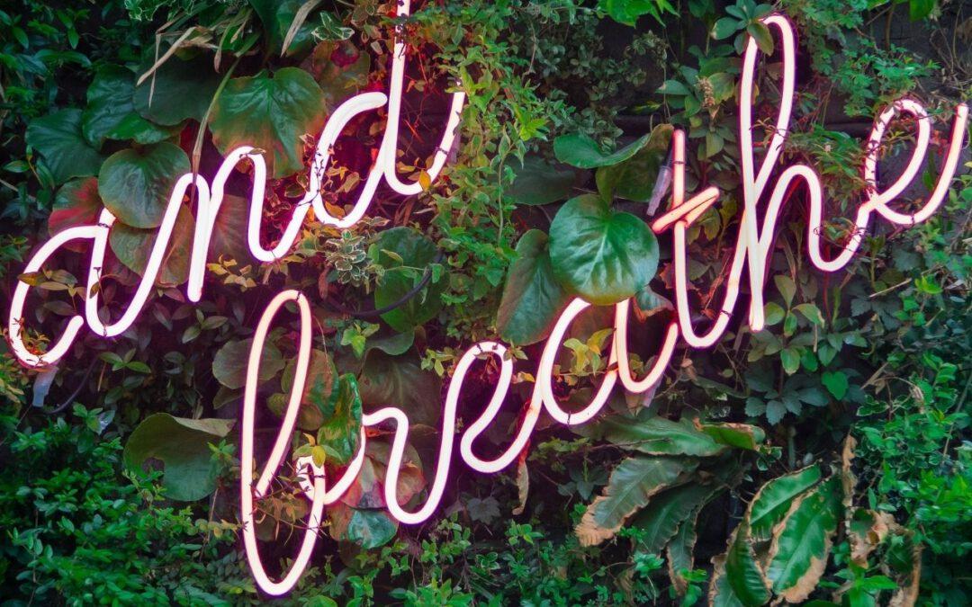 Breathe (Bild: Max van den Oetelaar auf Unsplash)