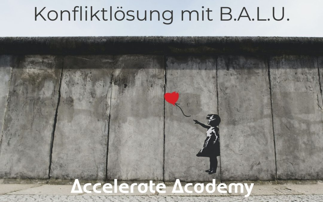 Konfliktlösung mit B.A.L.U. | Tool